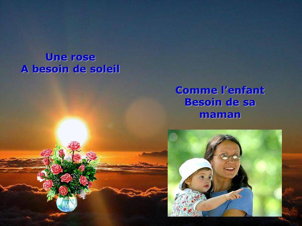 Une rose A besoin de soleil Comme l'enfant Besoin de sa maman