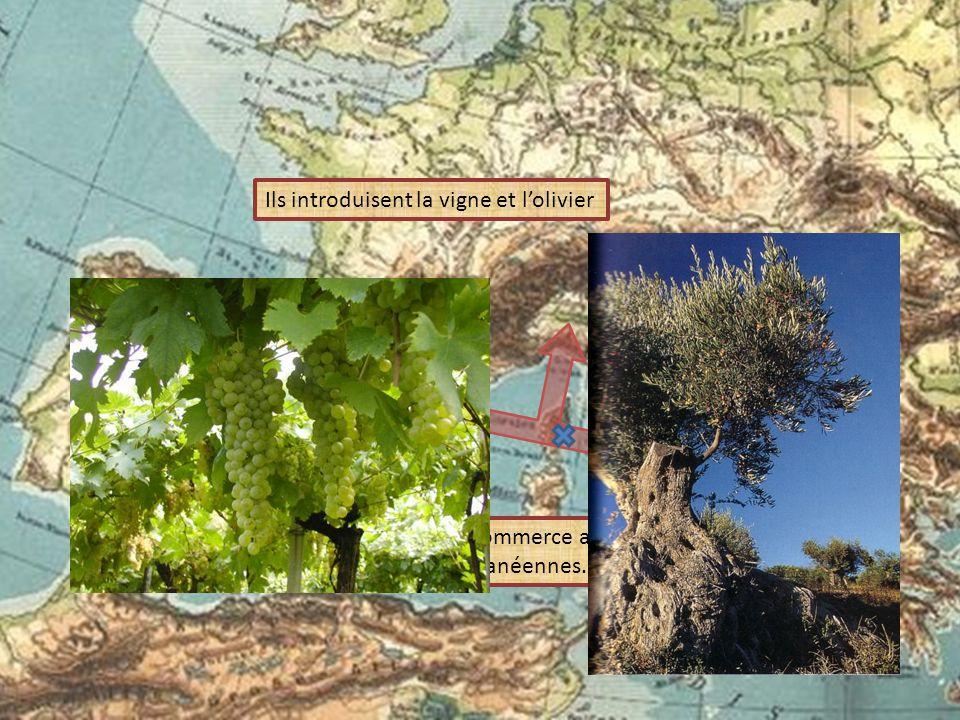 Ils introduisent la vigne et l'olivier