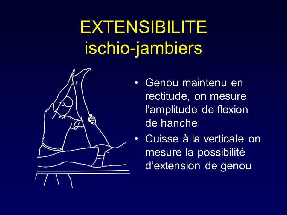EXTENSIBILITE ischio-jambiers