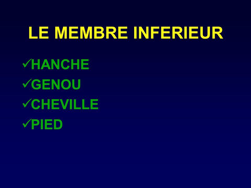 LE MEMBRE INFERIEUR HANCHE GENOU CHEVILLE PIED