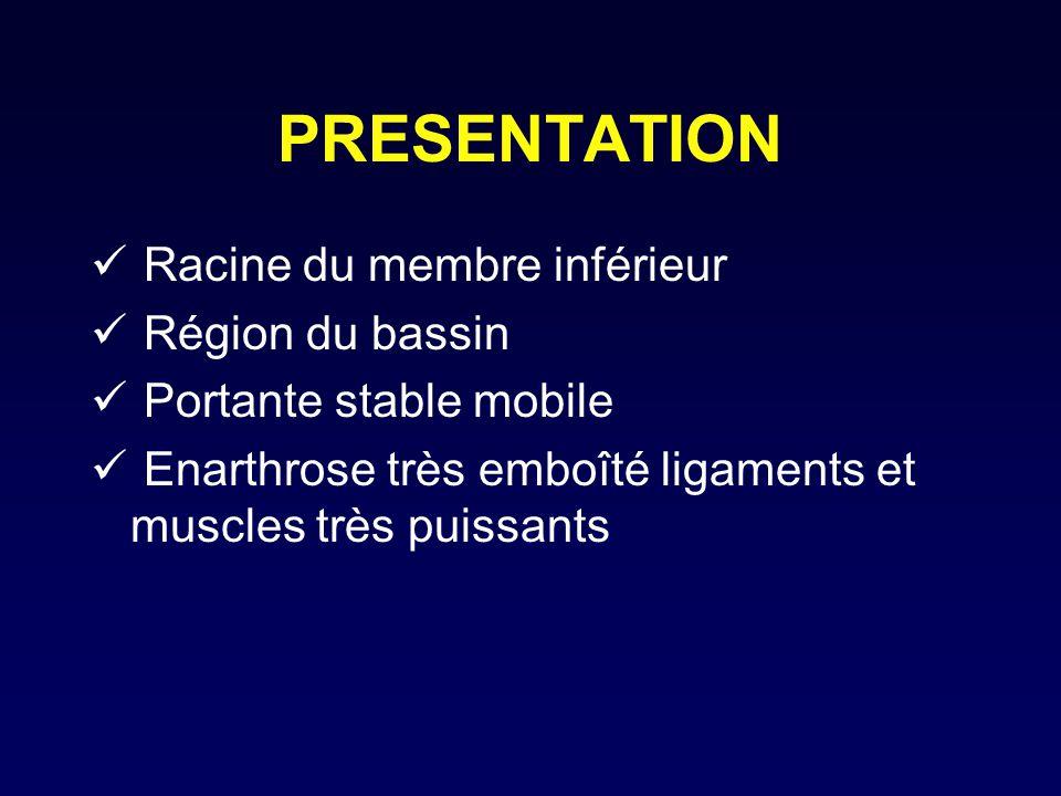 PRESENTATION Racine du membre inférieur Région du bassin