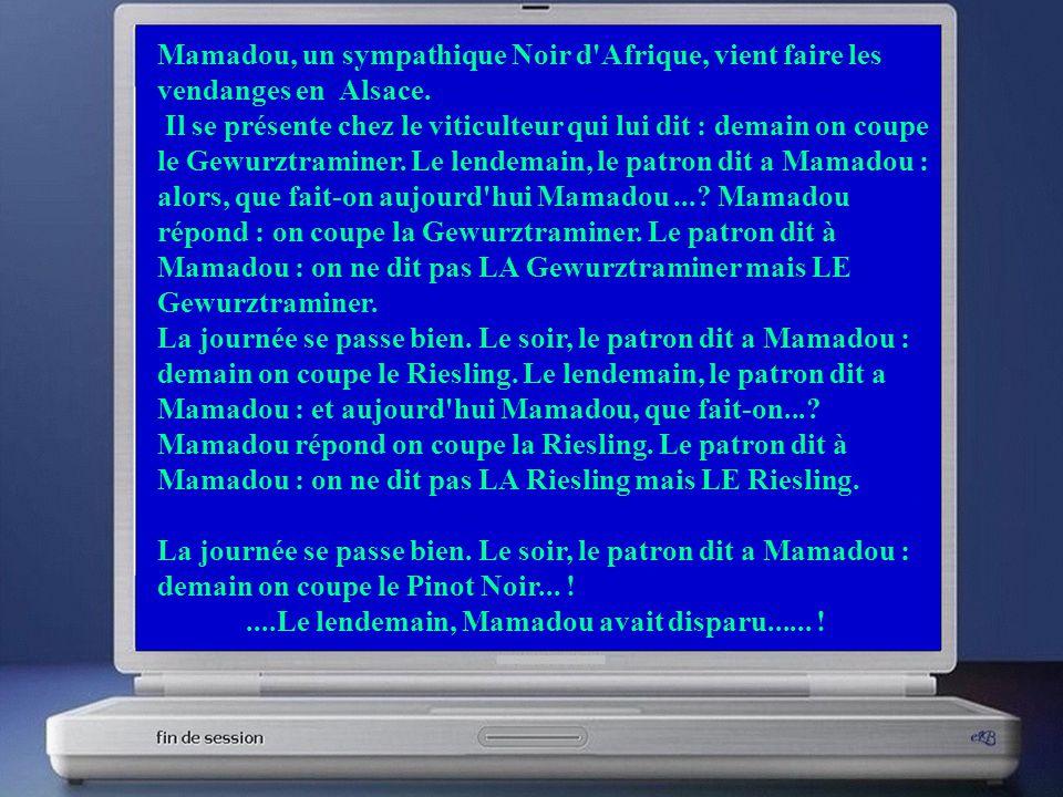 Mamadou, un sympathique Noir d Afrique, vient faire les vendanges en Alsace.