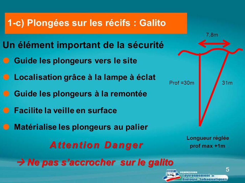 1-c) Plongées sur les récifs : Galito