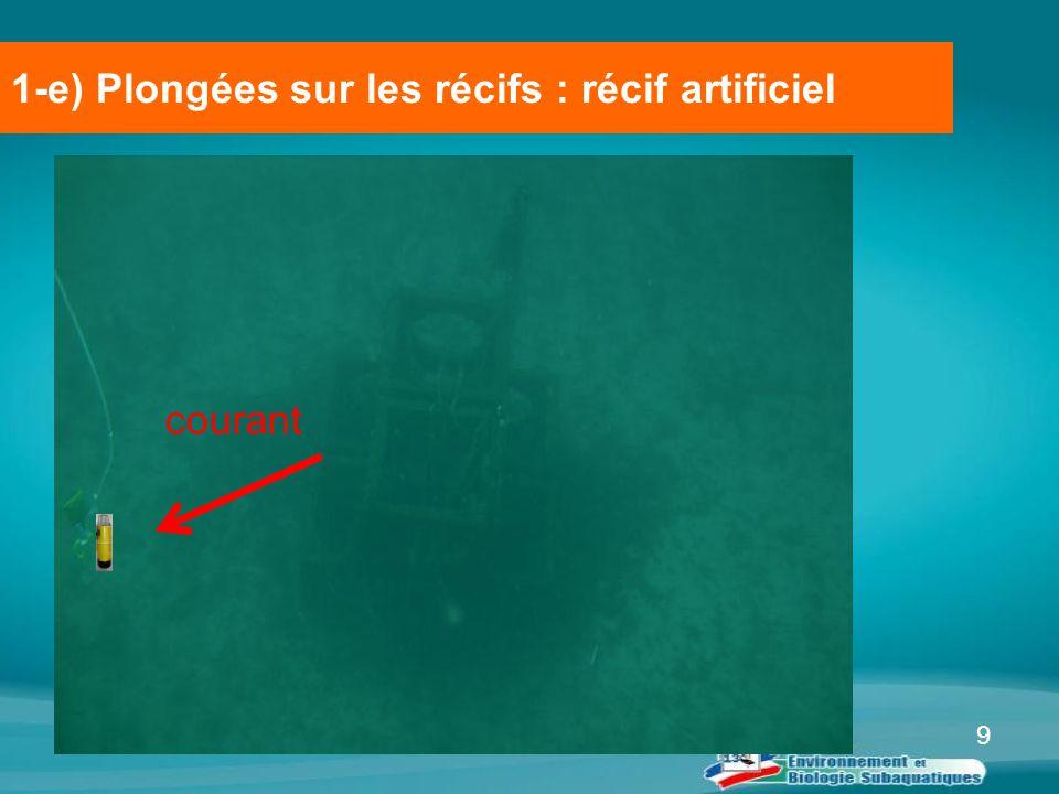 1-e) Plongées sur les récifs : récif artificiel