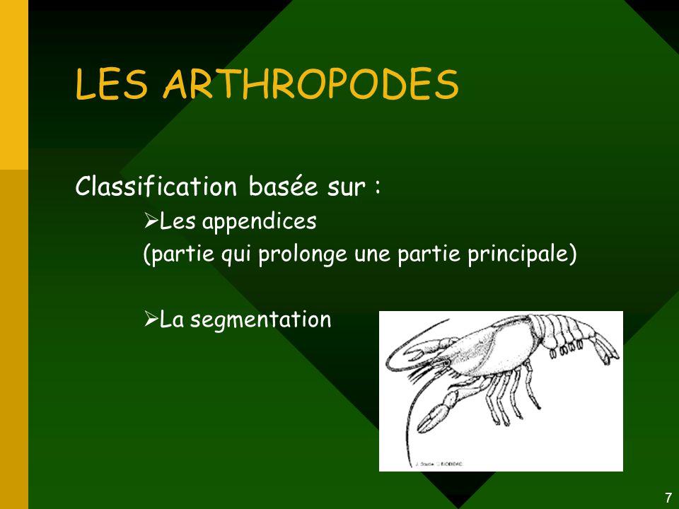 LES ARTHROPODES Classification basée sur : Les appendices