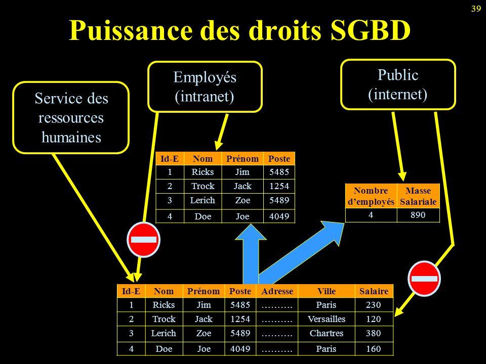Puissance des droits SGBD