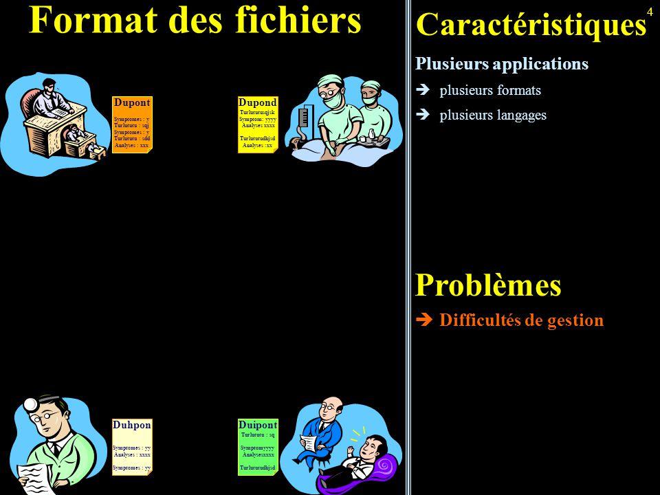 Format des fichiers Caractéristiques Problèmes Plusieurs applications