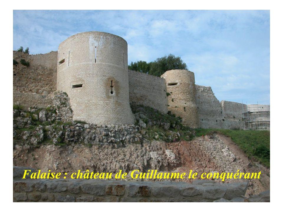 Falaise : château de Guillaume le conquérant