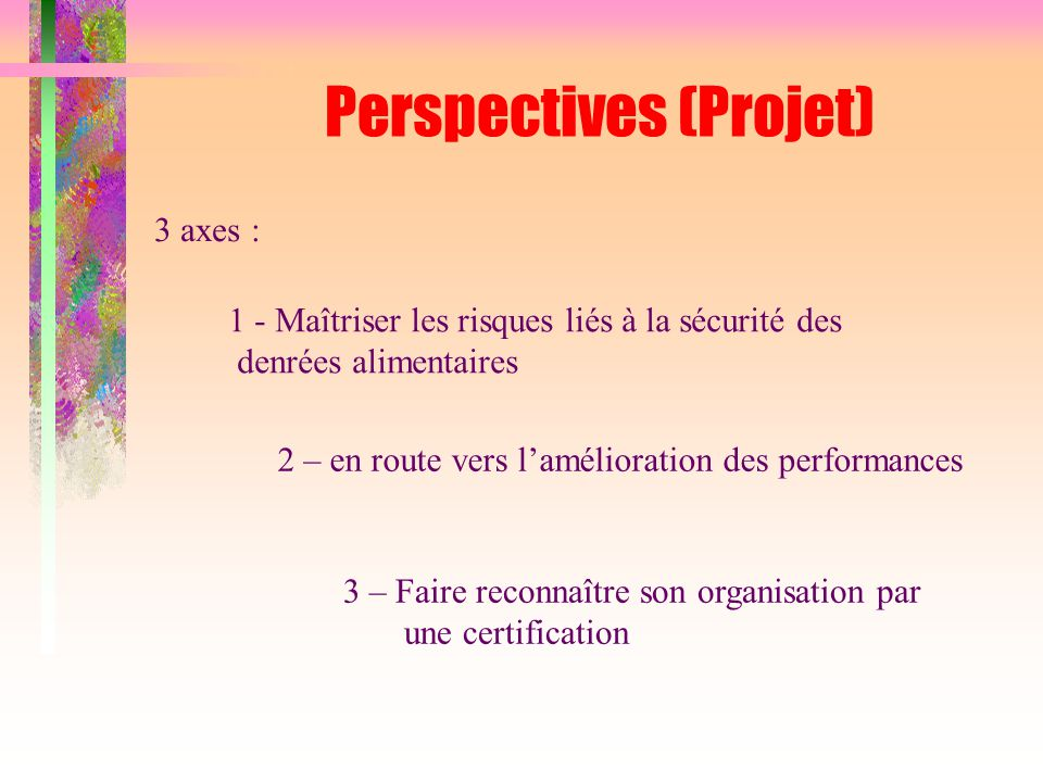 Perspectives (Projet)