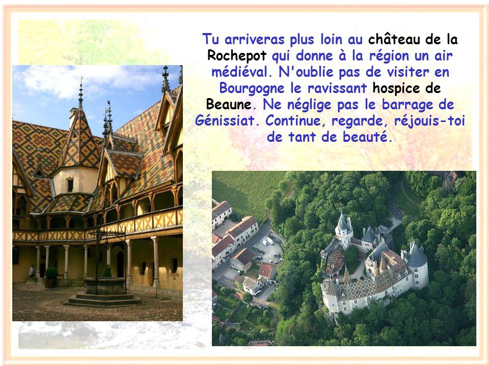 Tu arriveras plus loin au château de la Rochepot qui donne à la région un air médiéval.