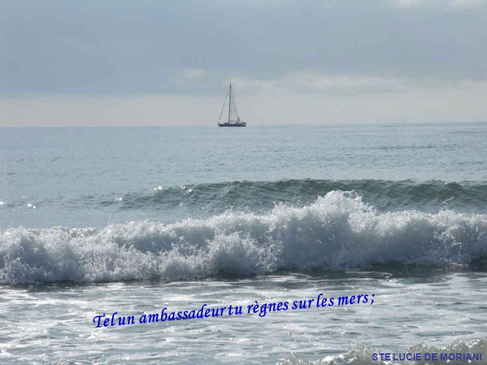 Tel un ambassadeur tu règnes sur les mers ;
