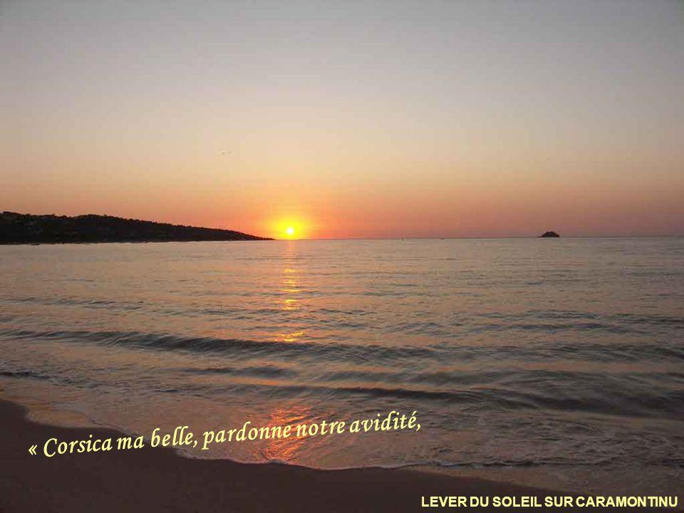 « Corsica ma belle, pardonne notre avidité,