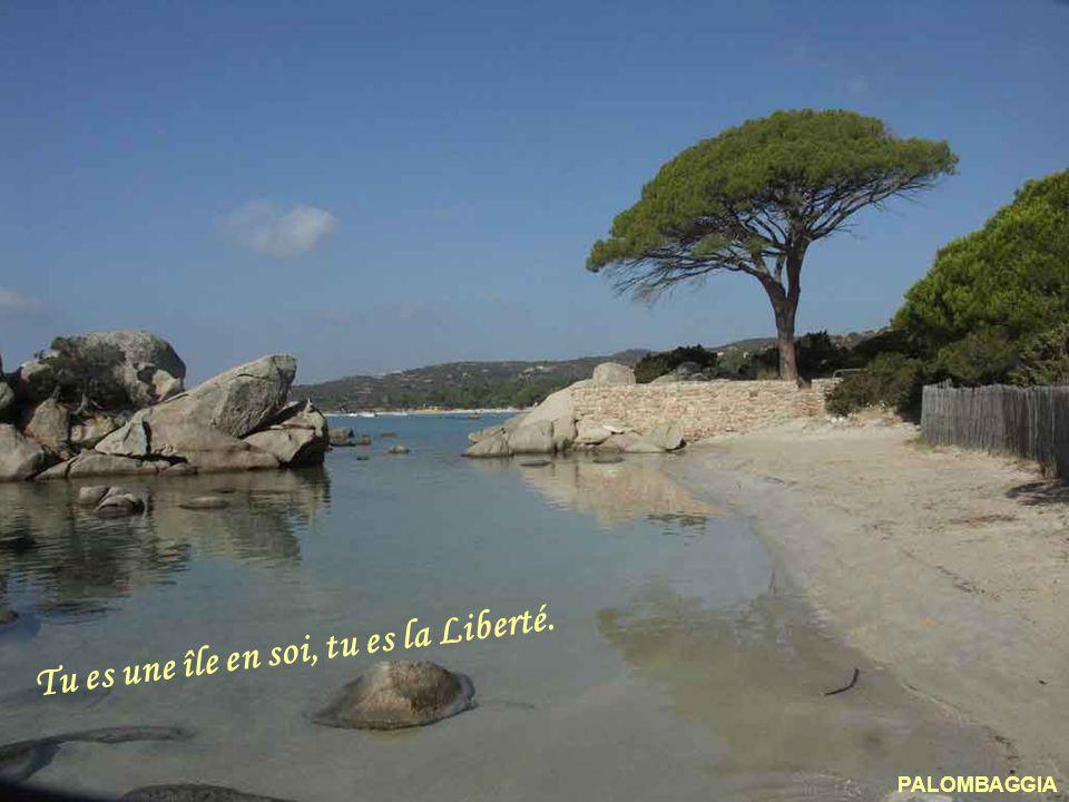 Tu es une île en soi, tu es la Liberté.