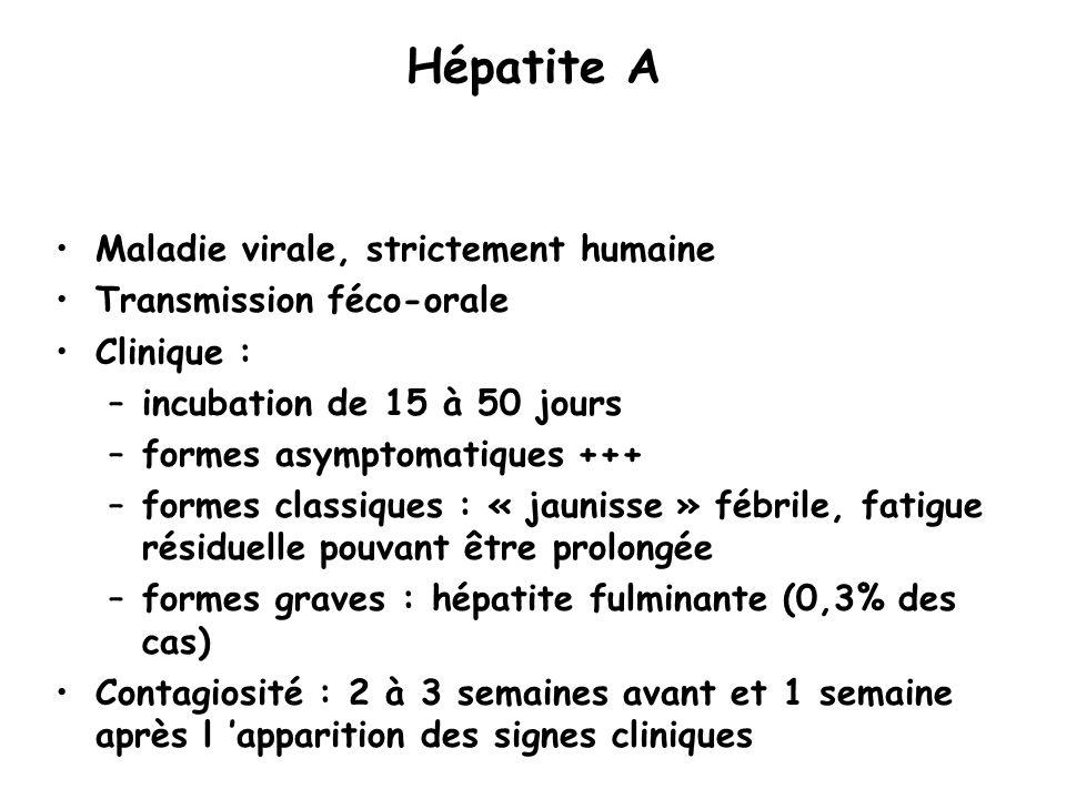 Hépatite A Maladie virale, strictement humaine Transmission féco-orale