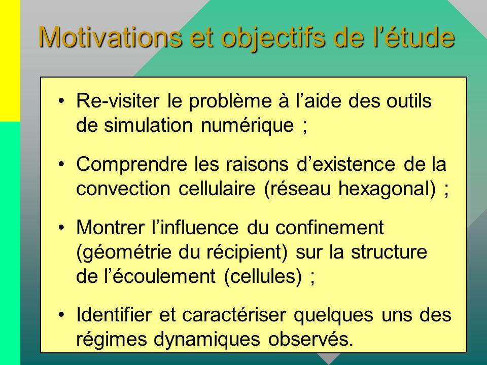 Motivations et objectifs de l'étude