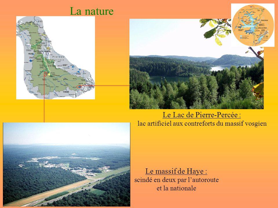 La nature Le Lac de Pierre-Percée : Le massif de Haye :