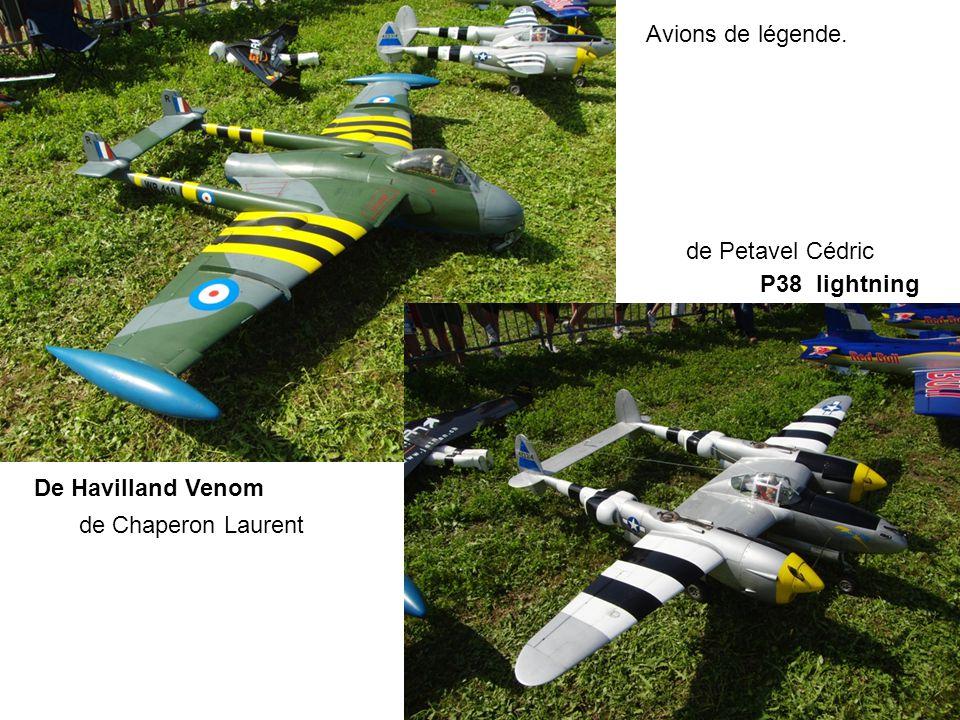 Avions de légende. de Petavel Cédric P38 lightning De Havilland Venom de Chaperon Laurent