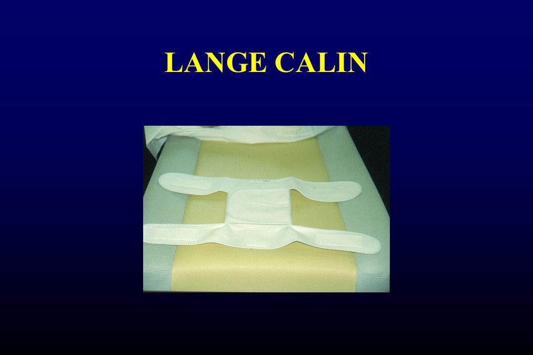LANGE CALIN