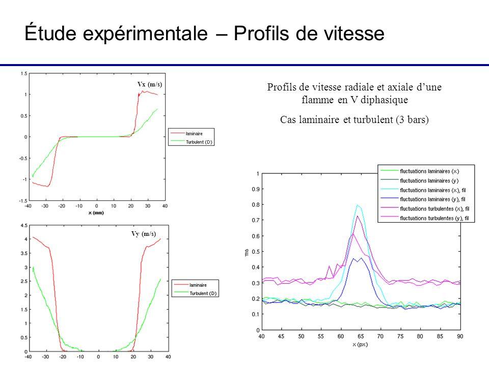 Étude expérimentale – Profils de vitesse