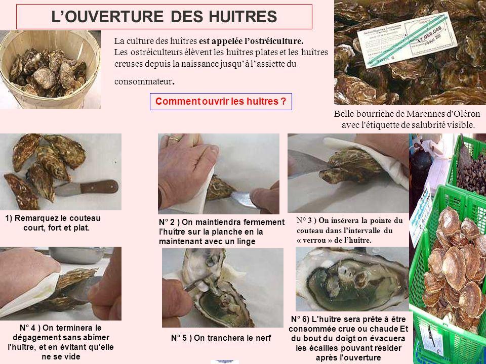 L'OUVERTURE DES HUITRES