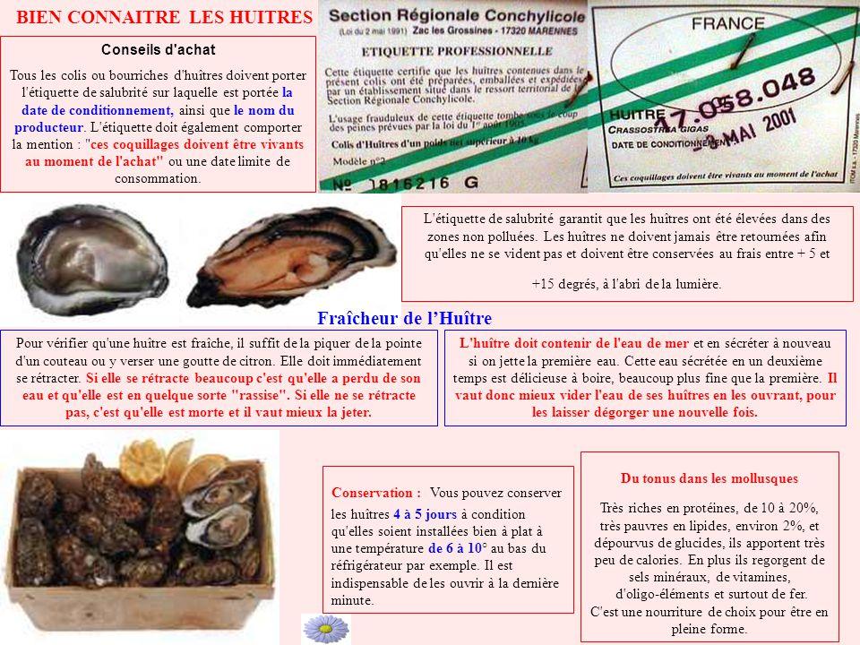 Du tonus dans les mollusques