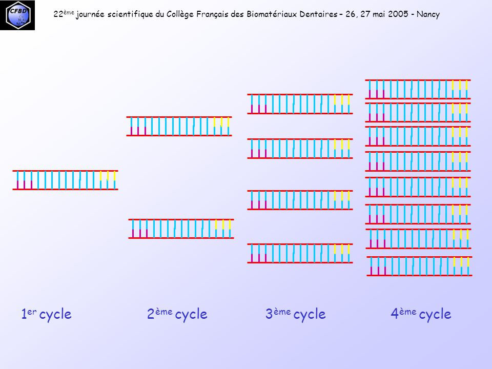 1er cycle 2ème cycle 3ème cycle 4ème cycle