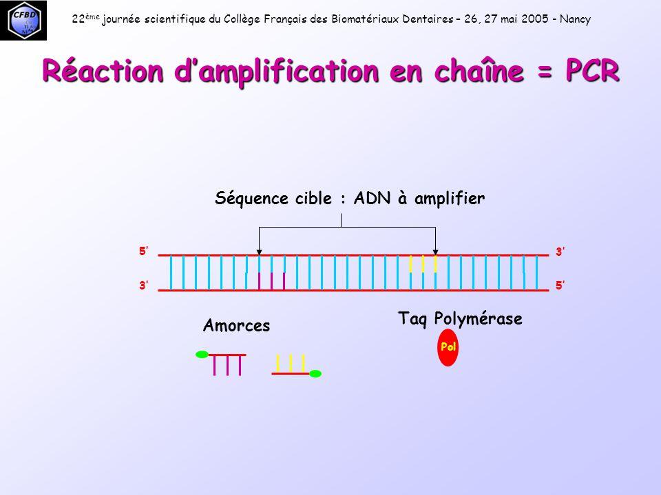 Réaction d'amplification en chaîne = PCR