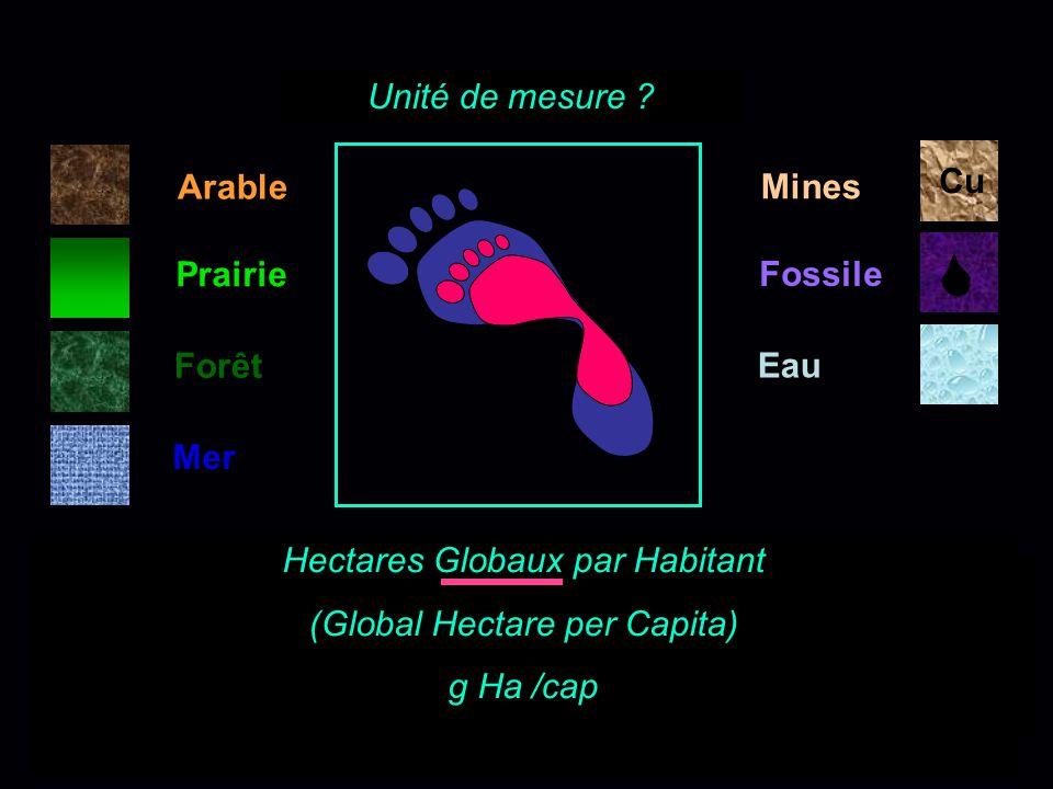 Hectares Globaux par Habitant (Global Hectare per Capita) g Ha /cap