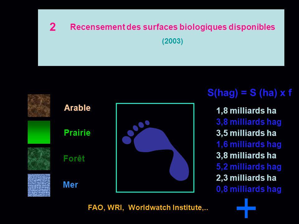Recensement des surfaces biologiques disponibles