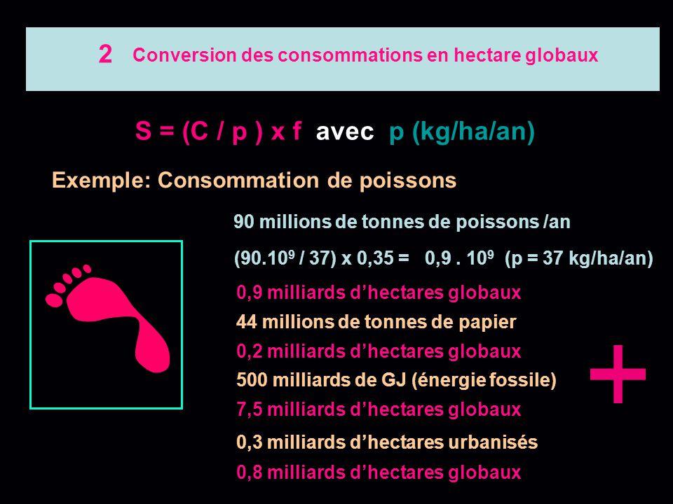 Conversion des consommations en hectare globaux