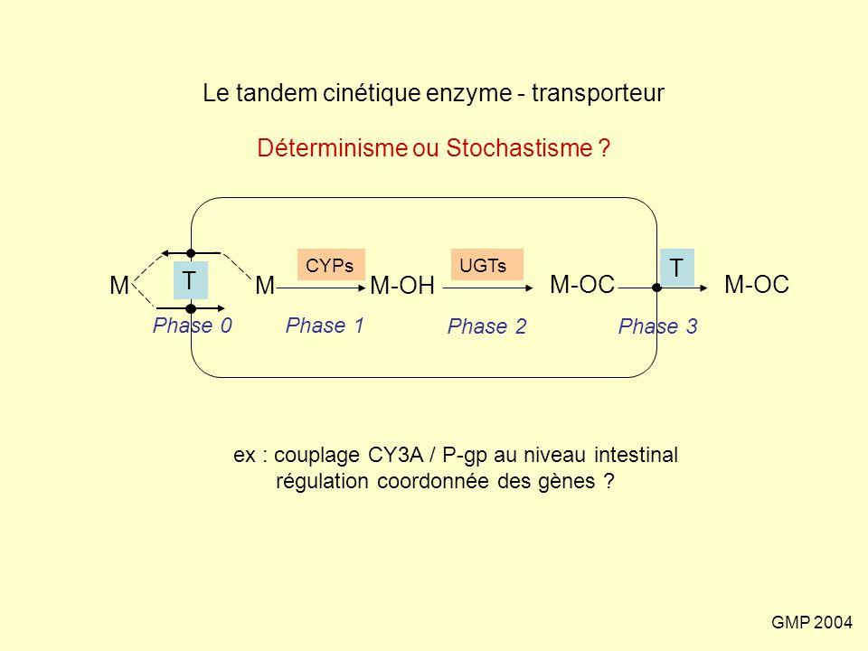 Le tandem cinétique enzyme - transporteur