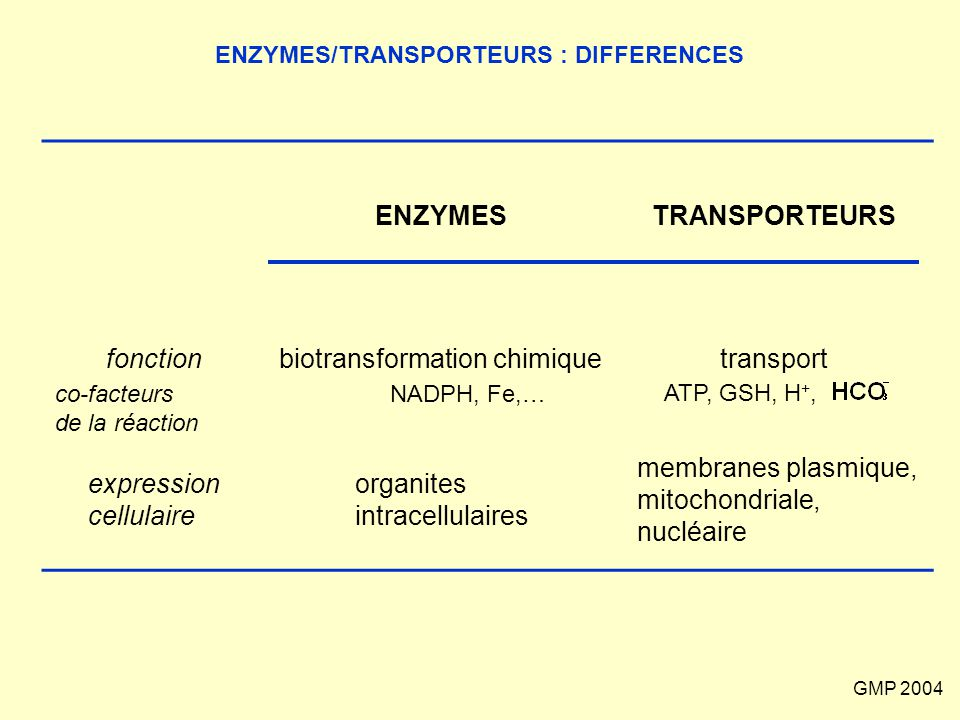 ENZYMES/TRANSPORTEURS : DIFFERENCES