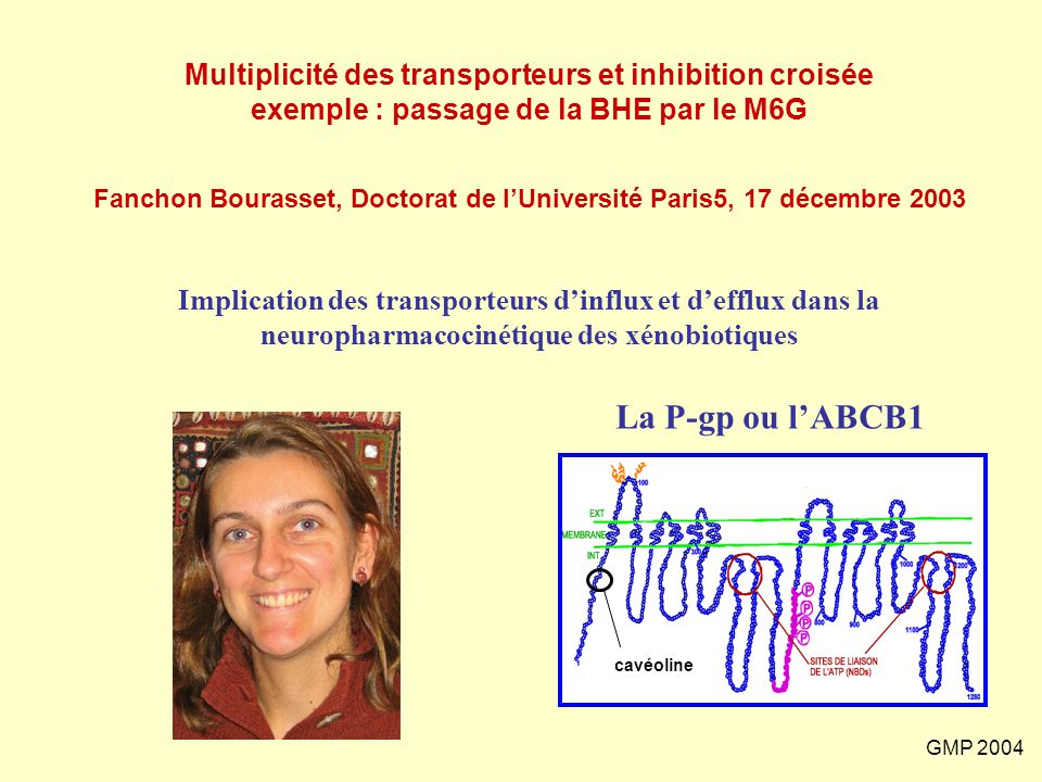 Fanchon Bourasset, Doctorat de l'Université Paris5, 17 décembre 2003