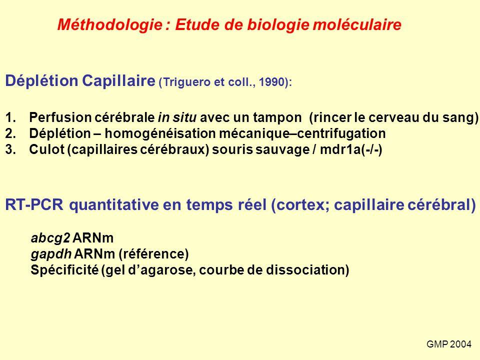 Méthodologie : Etude de biologie moléculaire