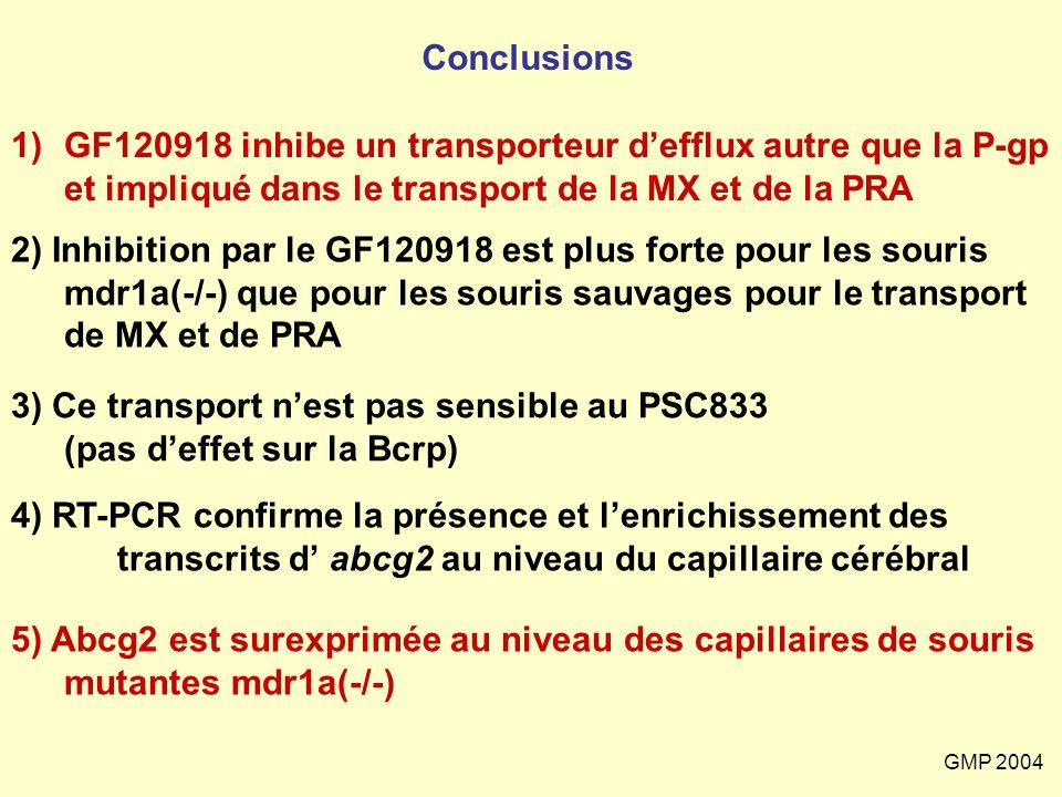 Conclusions GF120918 inhibe un transporteur d'efflux autre que la P-gp et impliqué dans le transport de la MX et de la PRA.