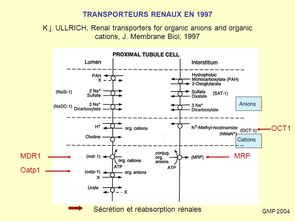 TRANSPORTEURS RENAUX EN 1997