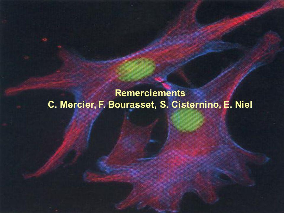 Remerciements C. Mercier, F. Bourasset, S. Cisternino, E. Niel
