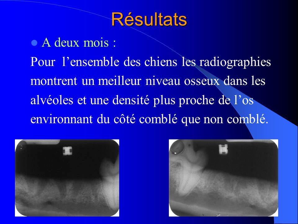 Résultats A deux mois : Pour l'ensemble des chiens les radiographies