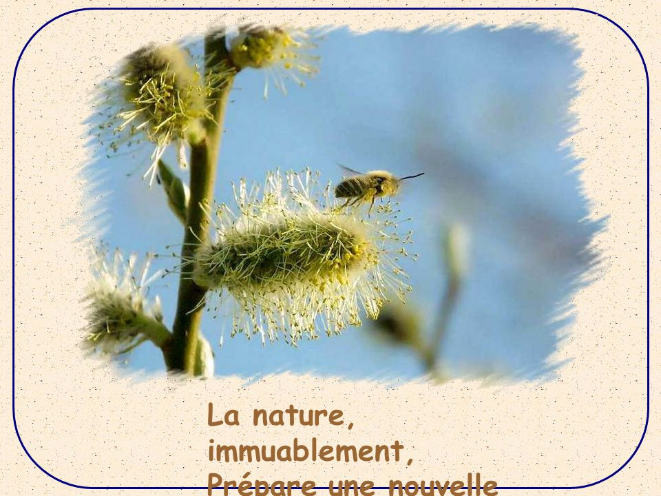 La nature, immuablement,