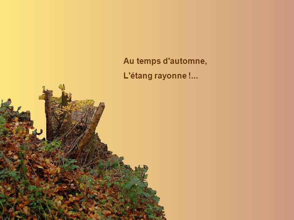 Au temps d automne, L étang rayonne !...