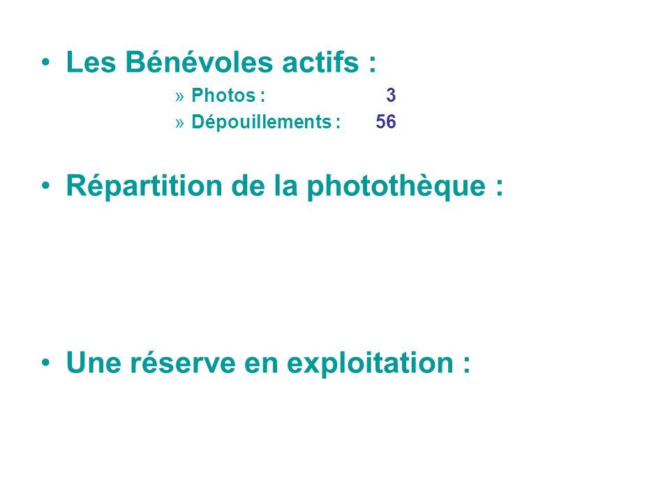 Répartition de la photothèque :