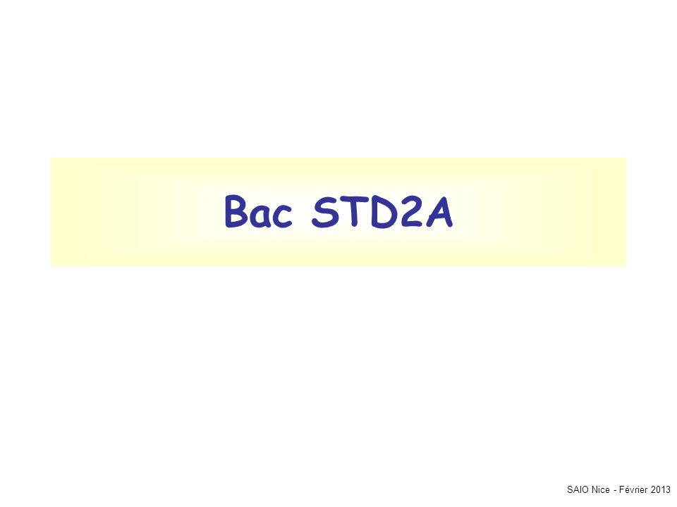Bac STD2A SAIO Nice - Février 2013