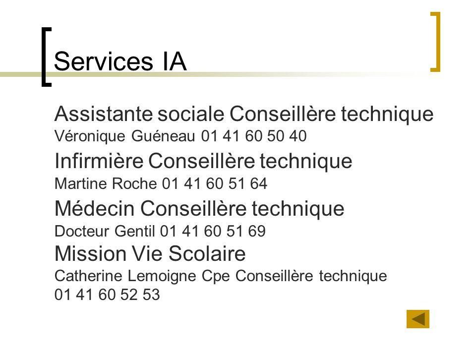 Services IA Assistante sociale Conseillère technique