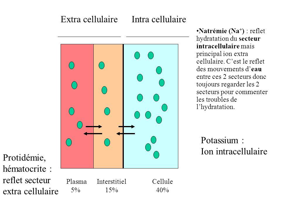 Protidémie, hématocrite : reflet secteur extra cellulaire