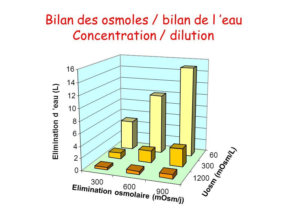 Bilan des osmoles / bilan de l 'eau Concentration / dilution
