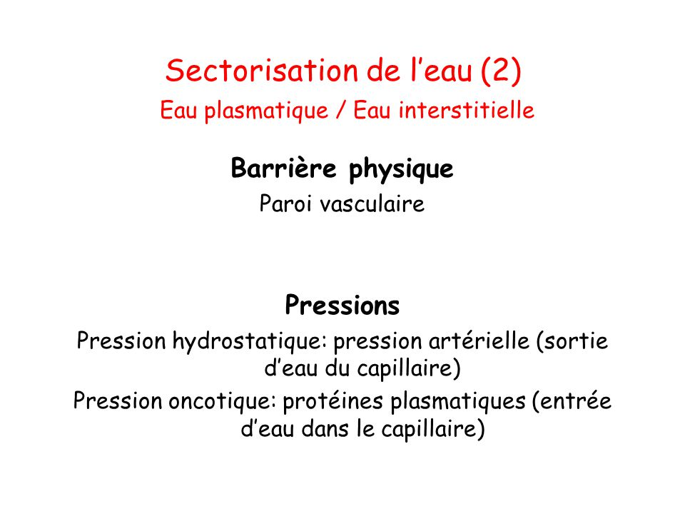 Sectorisation de l'eau (2) Eau plasmatique / Eau interstitielle