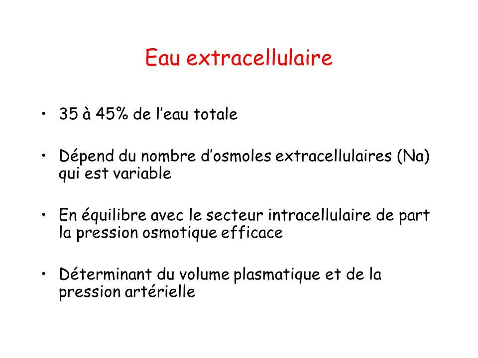 Eau extracellulaire 35 à 45% de l'eau totale
