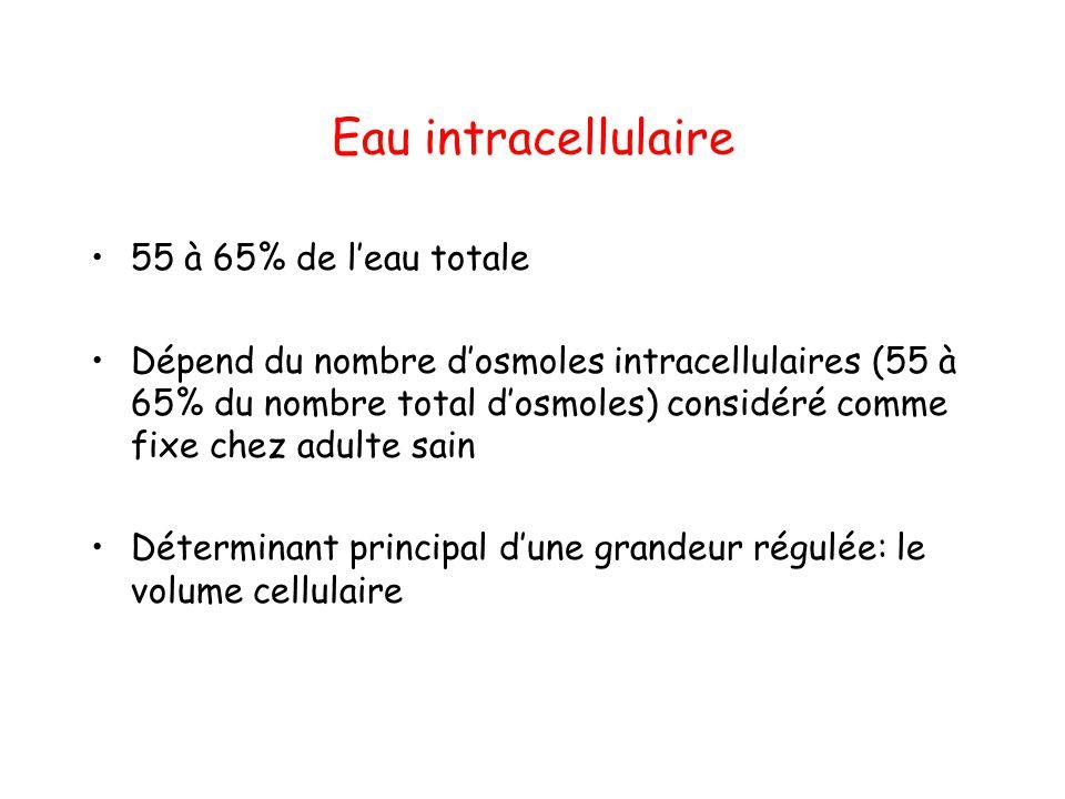 Eau intracellulaire 55 à 65% de l'eau totale