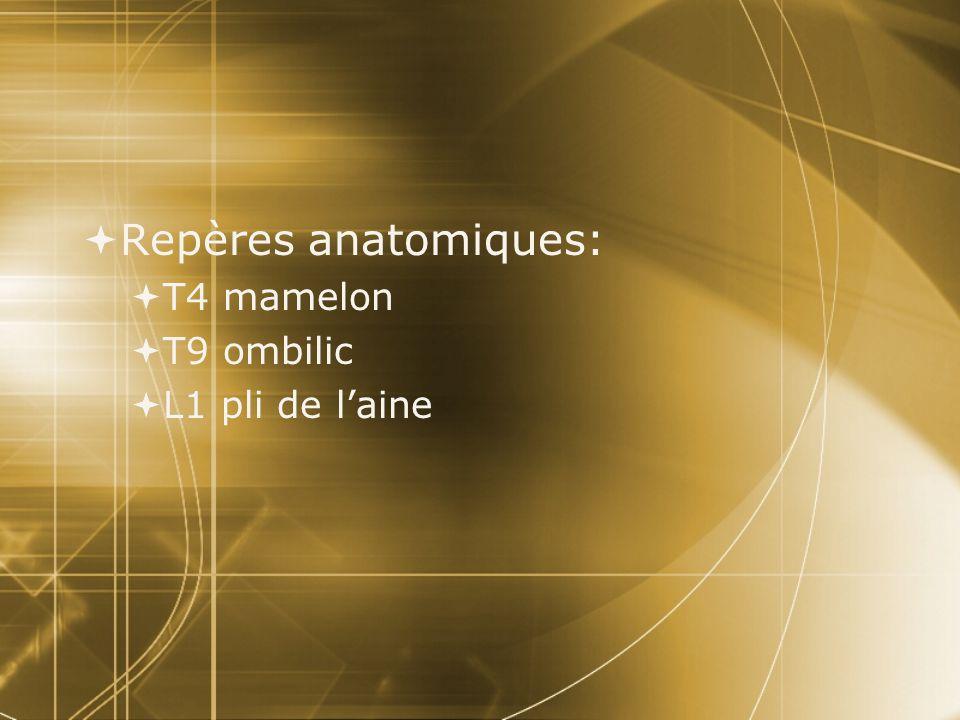 Repères anatomiques: T4 mamelon T9 ombilic L1 pli de l'aine