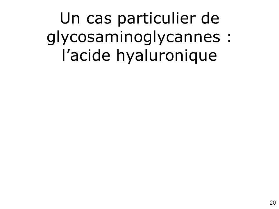 Un cas particulier de glycosaminoglycannes : l'acide hyaluronique